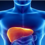 Causes and Treatment for Alcoholic Liver