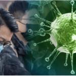 Coronavirus From China-How Dangerous It Is?