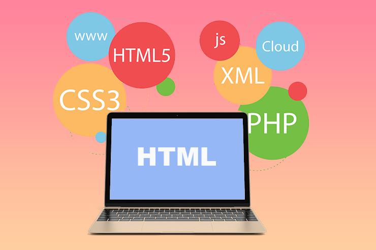 Web Design Firm