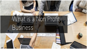 What Is a Non Profit Business