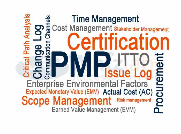 PMP Certified Project Manager