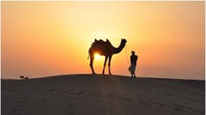 Highlights of Desert Safari Abu Dhabi Tour withImportant Tips