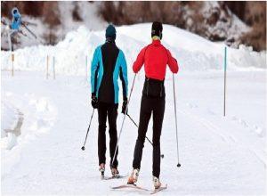 Professional Ski Instructor